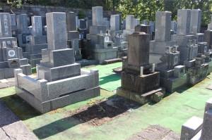 空き墓地情報8