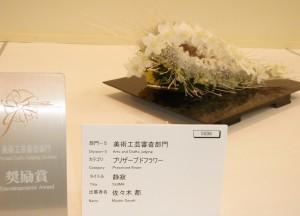 前坊守 花 世界らん展2013