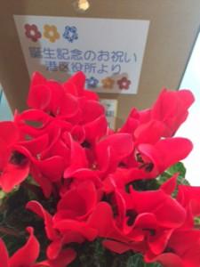 区からのお花